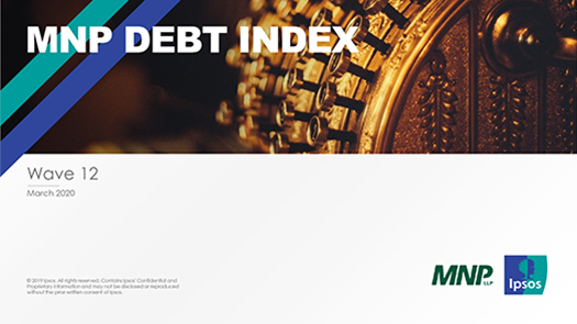 Cover of the MNP Consumer Debt Index Tracking Charts document